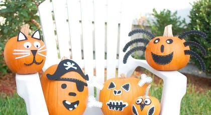 citrouilles gentilles qui ne font pas peur         Halloween