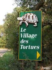 Affiche Village des Tortues