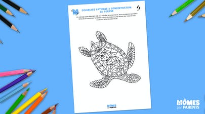 Coloriage concentration Tortue
