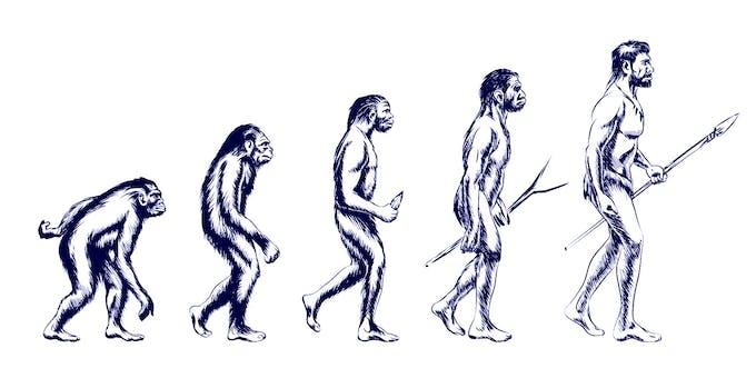Evolution de l'homme au cours de la Préhistoire