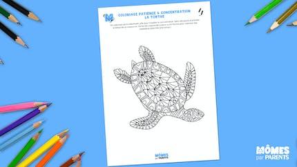 Coloriage patience & concentration : la tortue