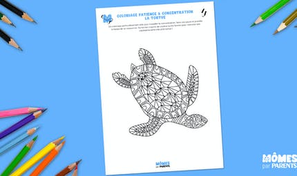 Coloriage patience & concentration : la tortue