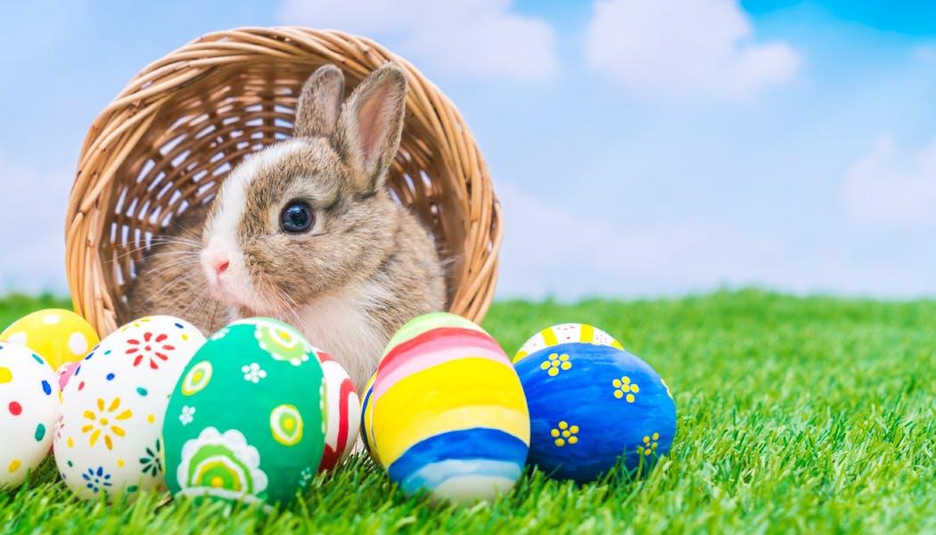 Cloches de Pâques, lapin de Pâques, œufs... pourquoi ces traditions ?
