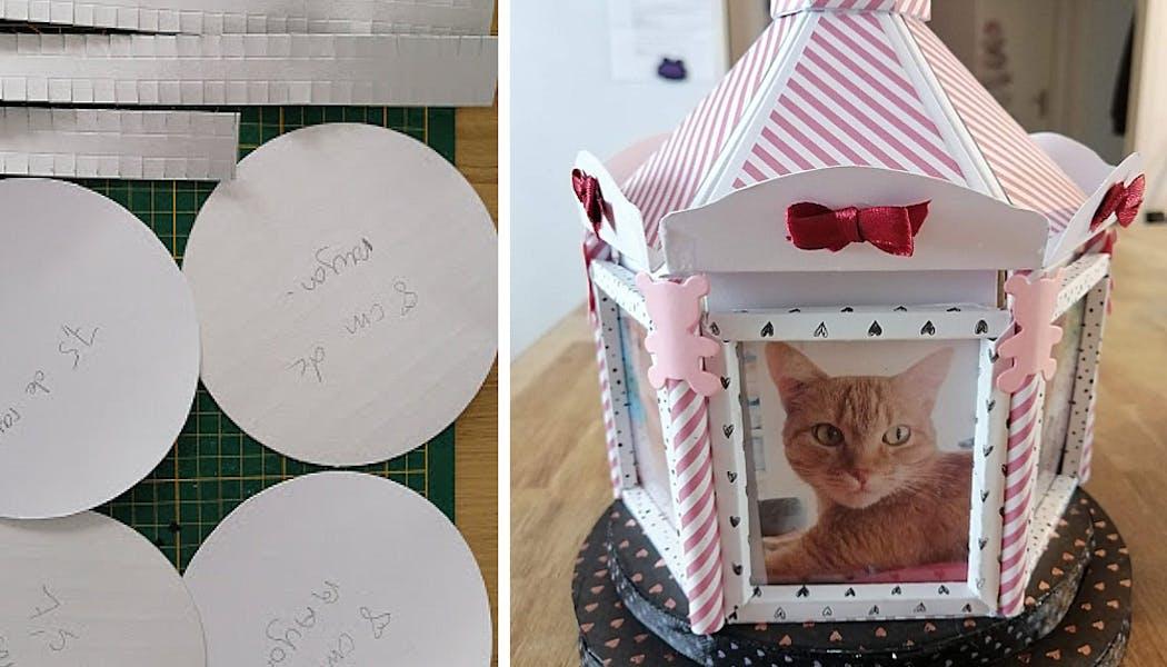 manège avec la photo d'un chat