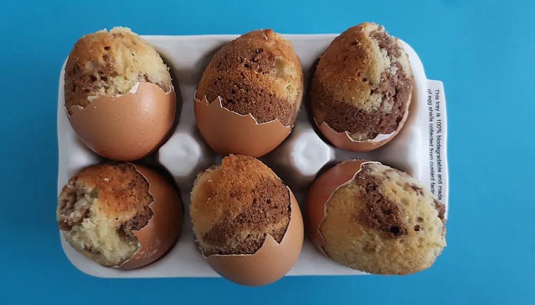 Marbrés dans des coquilles d'œufs