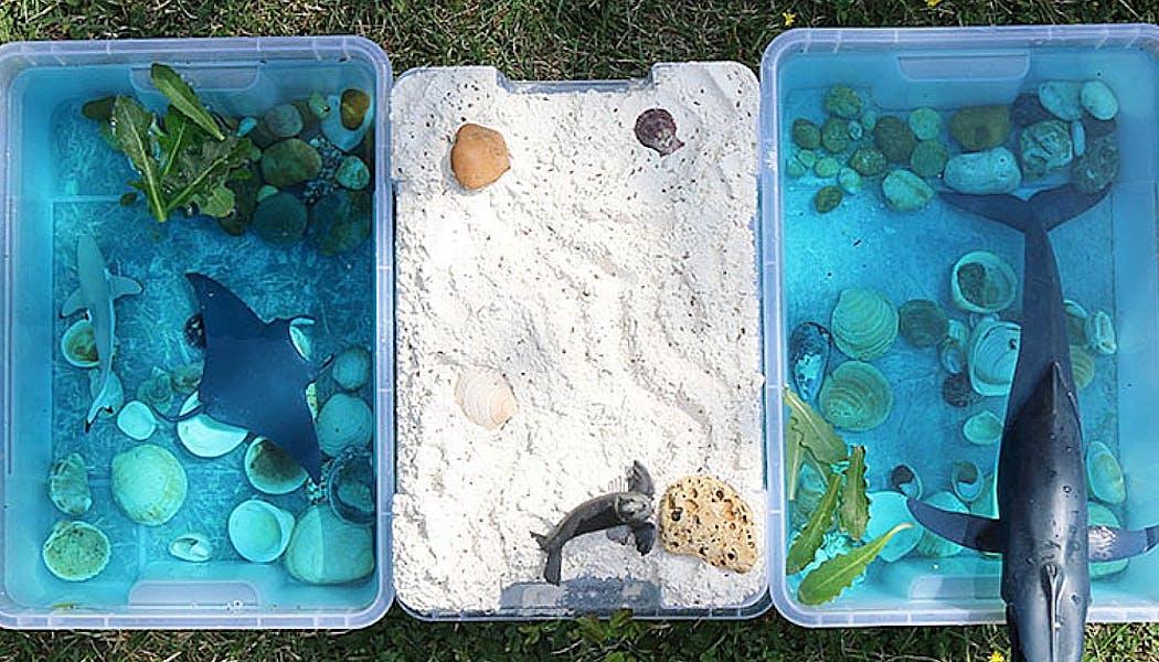 bac sensoriel avec de l'eau, des coquillages, de la farine, etc