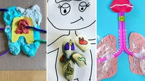 Top 10 des activités pour faire découvrir le corps humain aux enfants