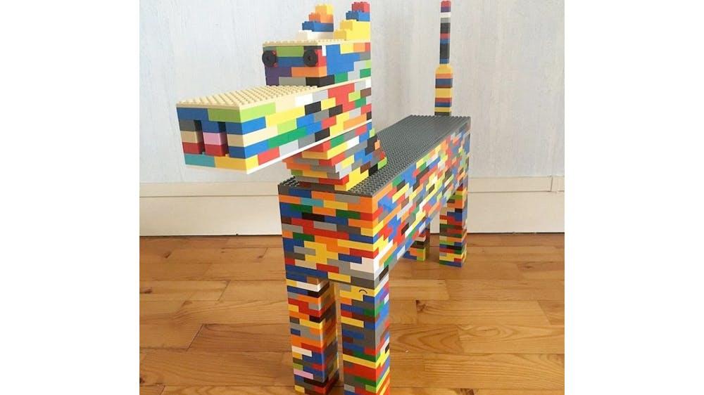 Les créations incroyables en Lego de Sacha, 14 ans, non voyant
