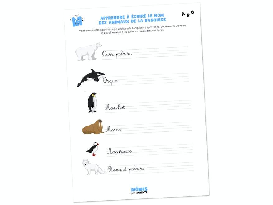 Fiche à imprimer - Apprendre à écrire le nom des animaux de la banquise