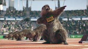 Les fameuses marmottes de France 3 sont de véritables stars aux États-Unis !