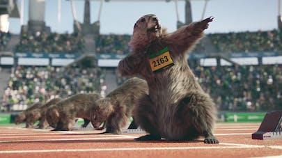 Les marmottes de france 3 font du sport