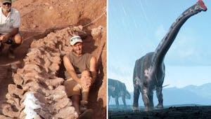 Dinosaure : un squelette découvert en Argentine appartiendrait au plus grand dino jamais retrouvé !