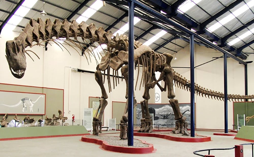 découverte en Argentine du squelette d'un colossal dinosaure titanosaure
