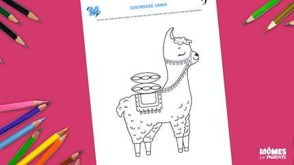 Coloriage Lama
