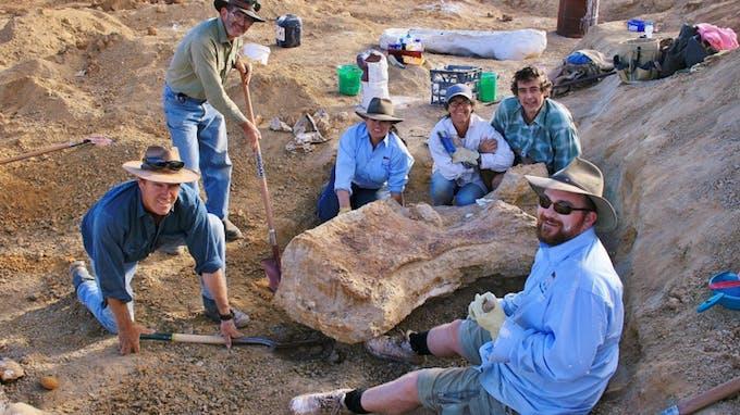 nouvelle espèce de dinosaure découverte en Australie