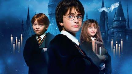 Harry Potter au programme de TF1 cet été !