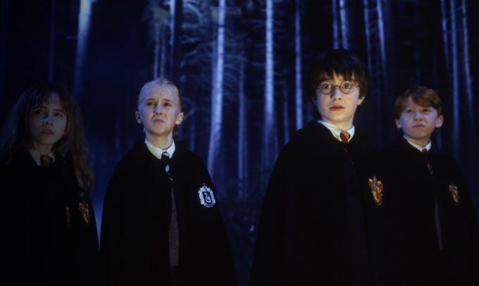 La forêt interdite Harry Potter