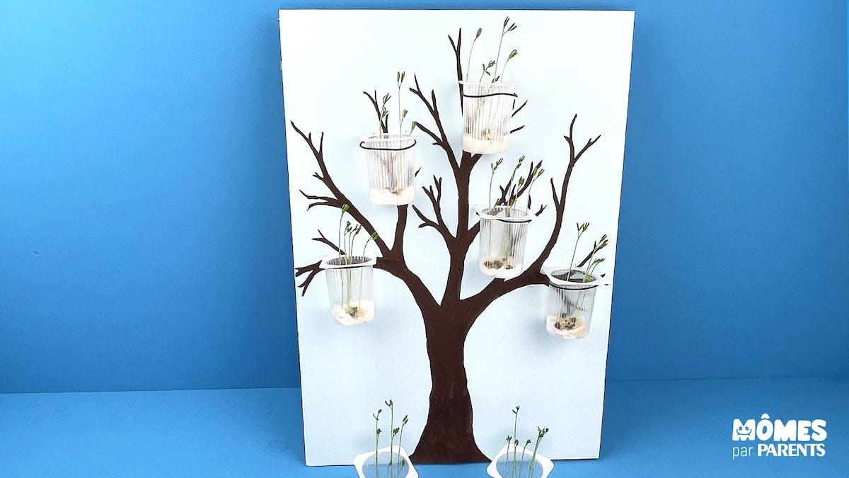 DIY : L'arbre qui pousse