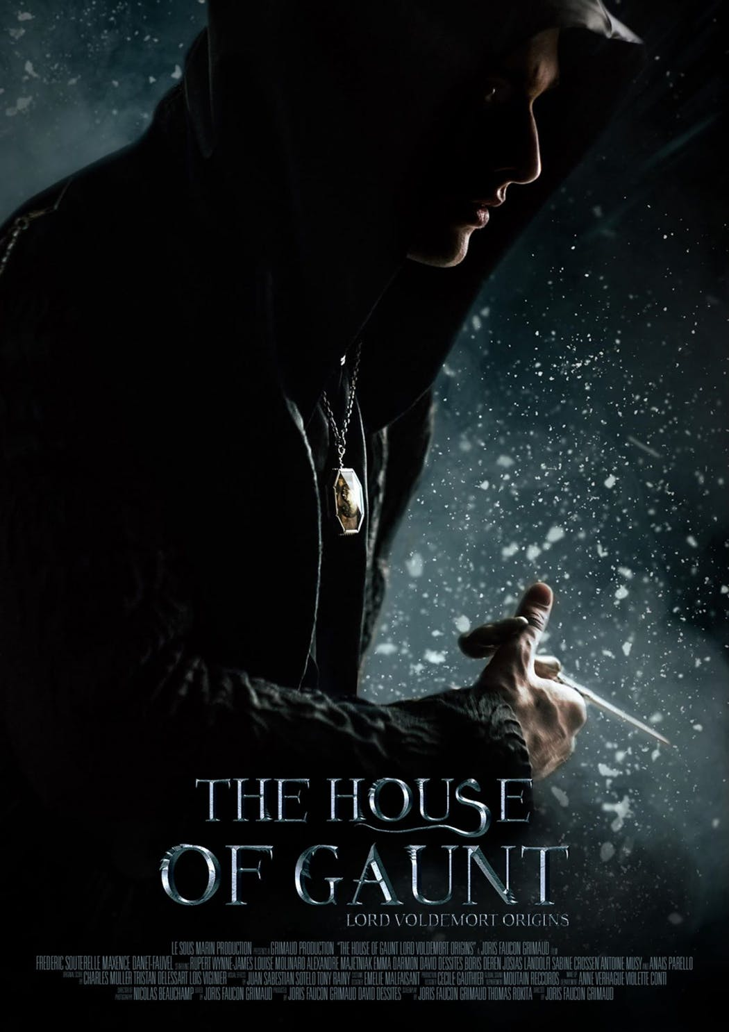The House of Gaunt : Lord Voldemort origins affiche