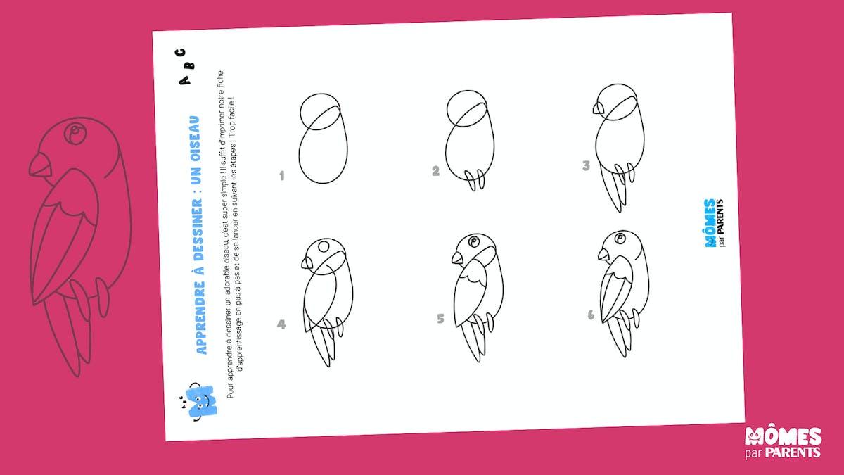 Apprendre à dessiner un oiseau