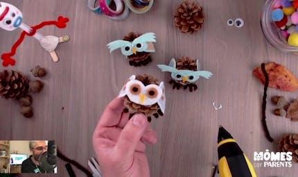 Vidéo - Replay - Mômes Part en Live - chouette pomme de pin