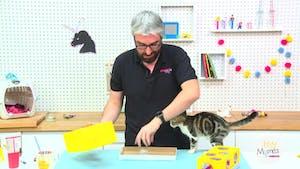 Vidéo - Replay - Mômes Part en Live - Bricolage d'une boîte pour chat